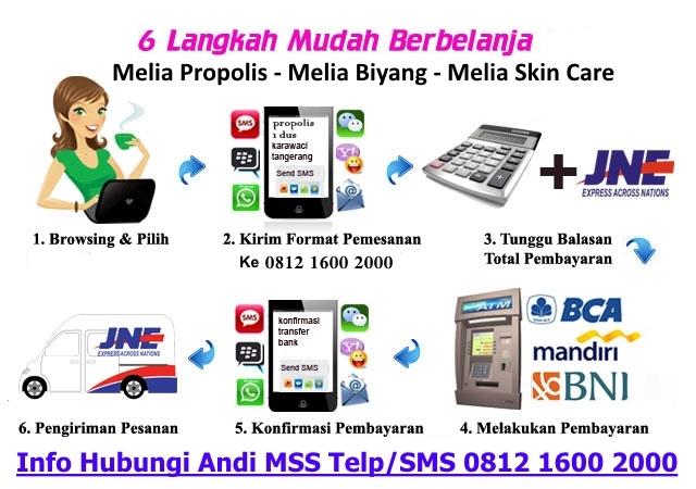 cara order propolis biyang skin care