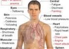 Penyembuhan Anemia Dengan Melia Propolis Melia Sehat Sejahtera