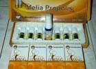 Tips Pengobatan Terapi Dosis Melia Propolis Untuk Semua Penyakit