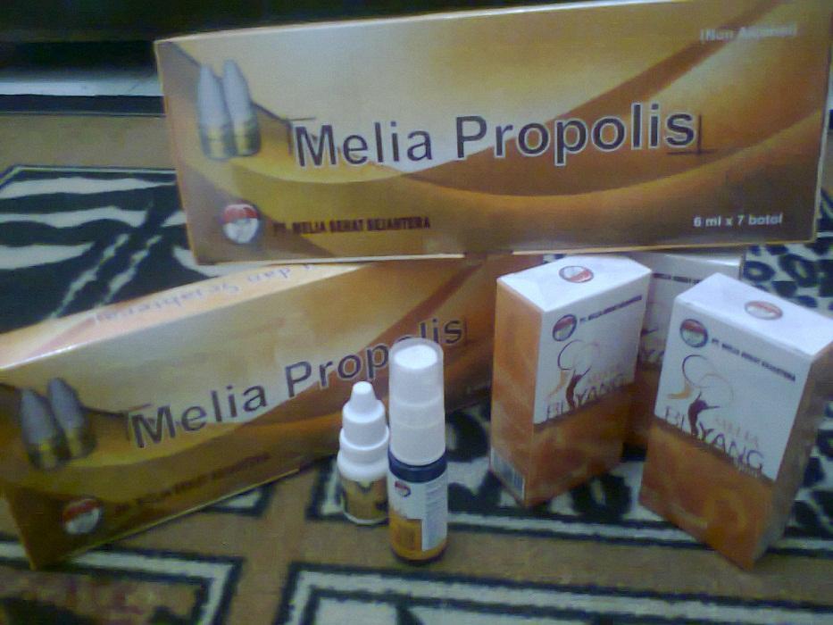 Agen Member Resmi Melia Propolis Biyang Bandung