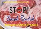 Melia Propolis Untuk Atasi Darah Rendah