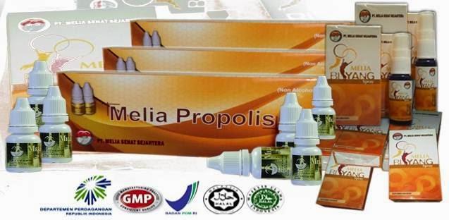 Propolis Melia Biyang