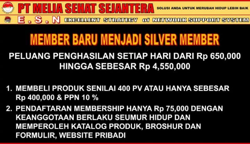 daftar member sliver