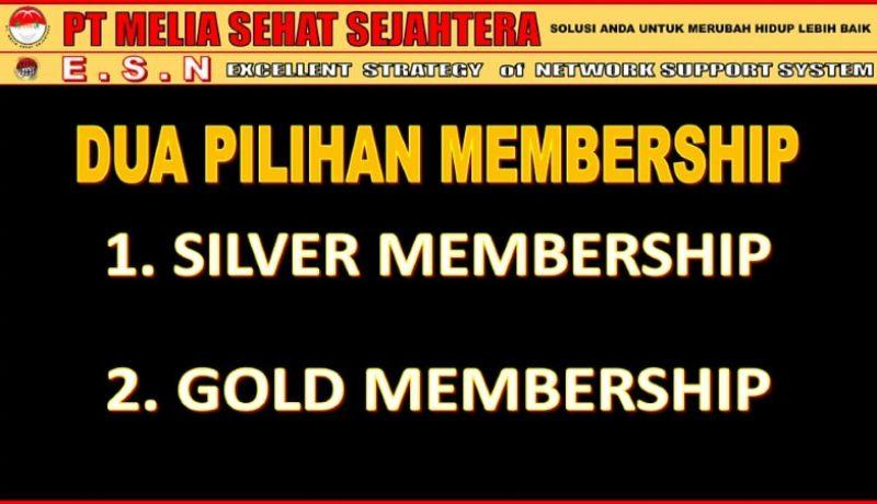 pilihan member silver gold mss